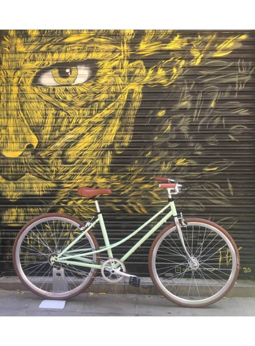 Bicicleta Monomarcha Clásica